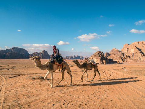 Beduín na ťave v jordánskej púšti
