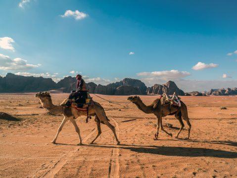 Beduín na ťave