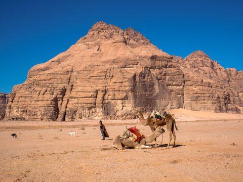 Pastier tiav - Jordánsko