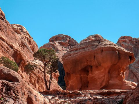 Petra - jeden zo 7 divov sveta