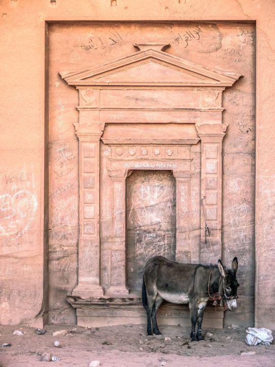 Architektonická pamiatka s oslom
