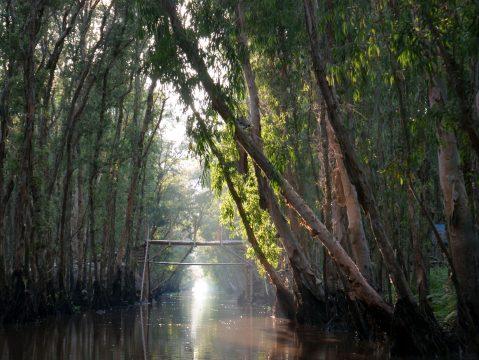 Rieka Vietnam