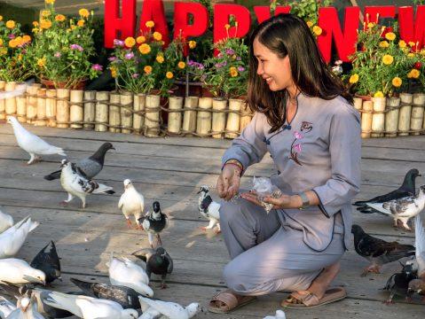 Kŕmenie holubov