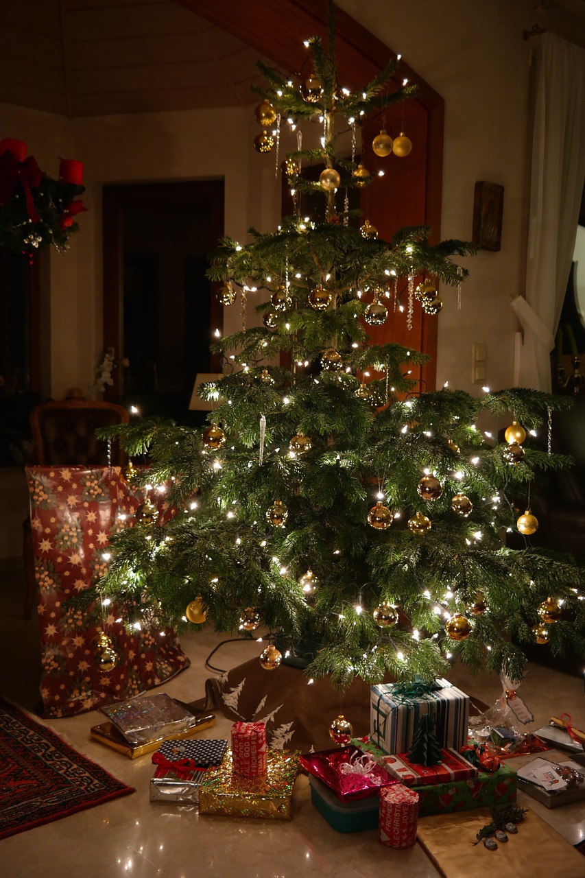 Vianočný stromček v kvetináči