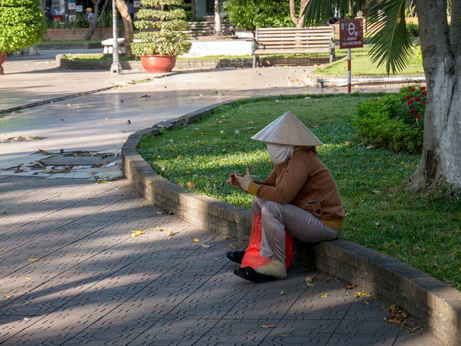 Sediaca Vietnamka